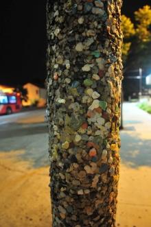 街中の電柱 なぜかこの電柱だけチューインガムが貼り巡らされている 意図されたのか? 連鎖的にいろんな人が貼ったのか?