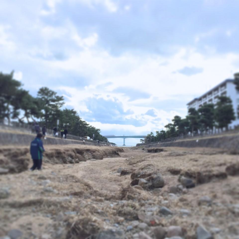 芦屋川の河口付近。川の流れはなく、砂地が続く。