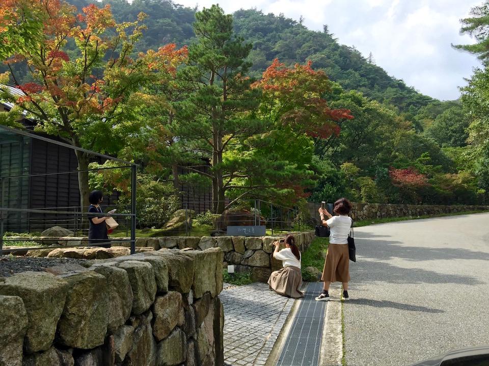 レッスン後のランチで立ち寄った、芦屋川上流のお蕎麦屋さん。木々も紅葉し始めています。