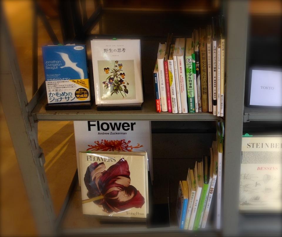 カモメのジョナサンが置かれていた書棚