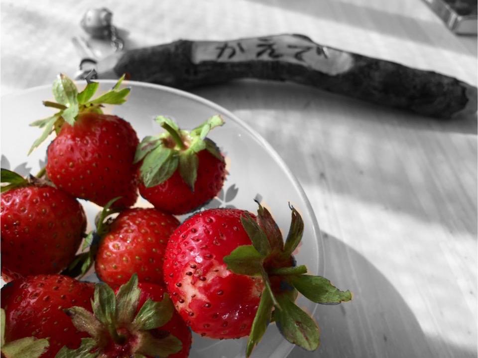 あま~いイチゴ